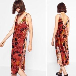 Zara Trafaluc Shift Dress